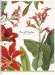 Spirálfüzet A4+ kockás 80lap Shkolyaryk Secret Garden vegyes