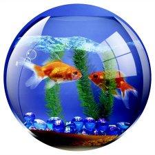 Egéralátét kör alakú Fellowes Brite akvárium #1