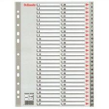 Regiszterműanyag A4 Maxi 1-54 Esselte szürke #1
